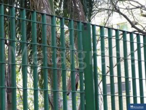Grades Para Isolamento De Parques